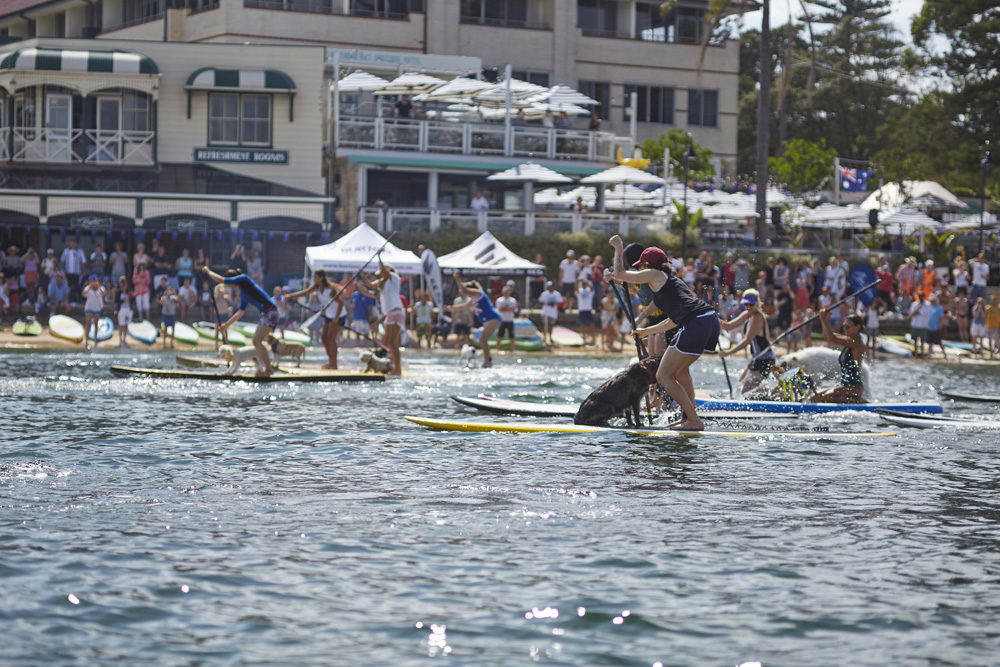 Every Man & His Dog Australia Day SUP 2016 – Thank you for all your support!